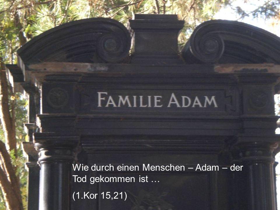 Wie durch einen Menschen – Adam – der Tod gekommen ist … (1.Kor 15,21)