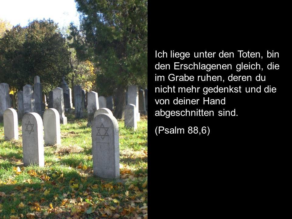 Ich liege unter den Toten, bin den Erschlagenen gleich, die im Grabe ruhen, deren du nicht mehr gedenkst und die von deiner Hand abgeschnitten sind. (