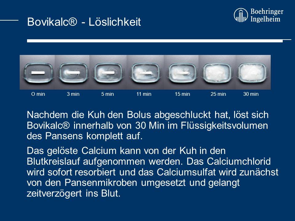 Bovikalc® - Löslichkeit Nachdem die Kuh den Bolus abgeschluckt hat, löst sich Bovikalc® innerhalb von 30 Min im Flüssigkeitsvolumen des Pansens komple