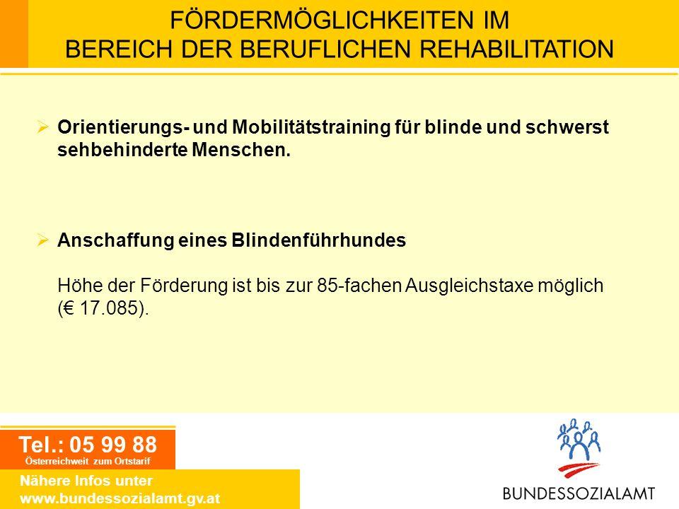 Tel.: 05 99 88 Österreichweit zum Ortstarif Nähere Infos unter www.bundessozialamt.gv.at FÖRDERMÖGLICHKEITEN IM BEREICH DER BERUFLICHEN REHABILITATION
