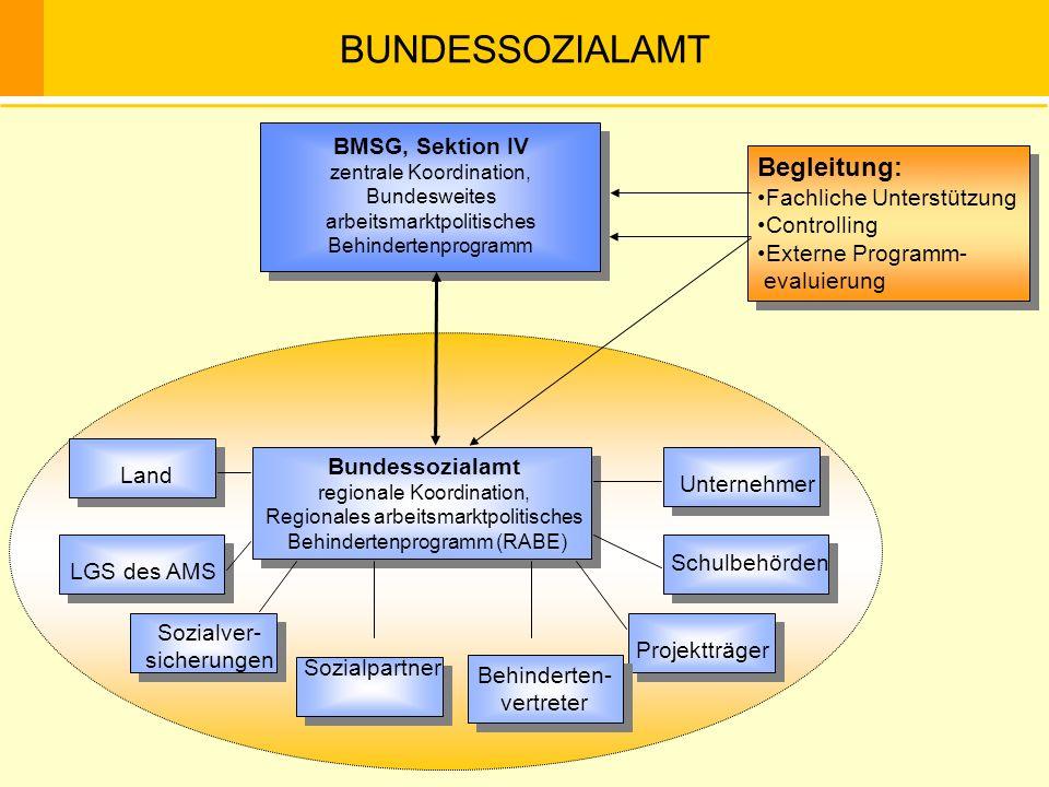 BMSG, Sektion IV zentrale Koordination, Bundesweites arbeitsmarktpolitisches Behindertenprogramm Bundessozialamt regionale Koordination, Regionales ar
