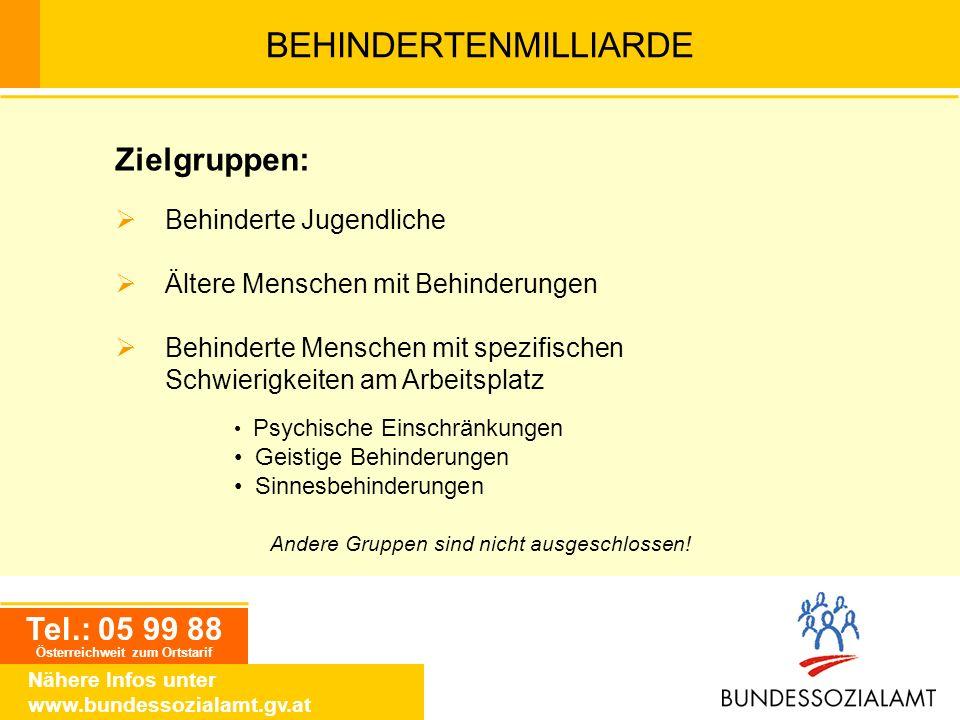 BEHINDERTENMILLIARDE Tel.: 05 99 88 Österreichweit zum Ortstarif Nähere Infos unter www.bundessozialamt.gv.at Zielgruppen: Behinderte Jugendliche Älte