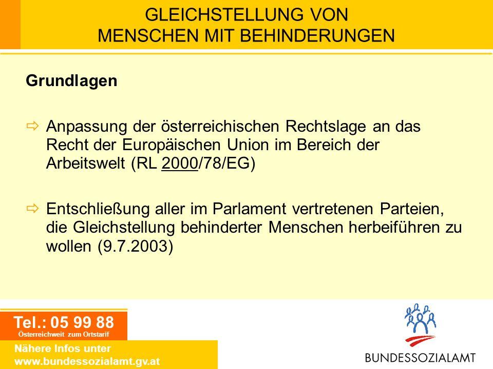 Tel.: 05 99 88 Österreichweit zum Ortstarif Nähere Infos unter www.bundessozialamt.gv.at GLEICHSTELLUNG VON MENSCHEN MIT BEHINDERUNGEN Grundlagen Anpa