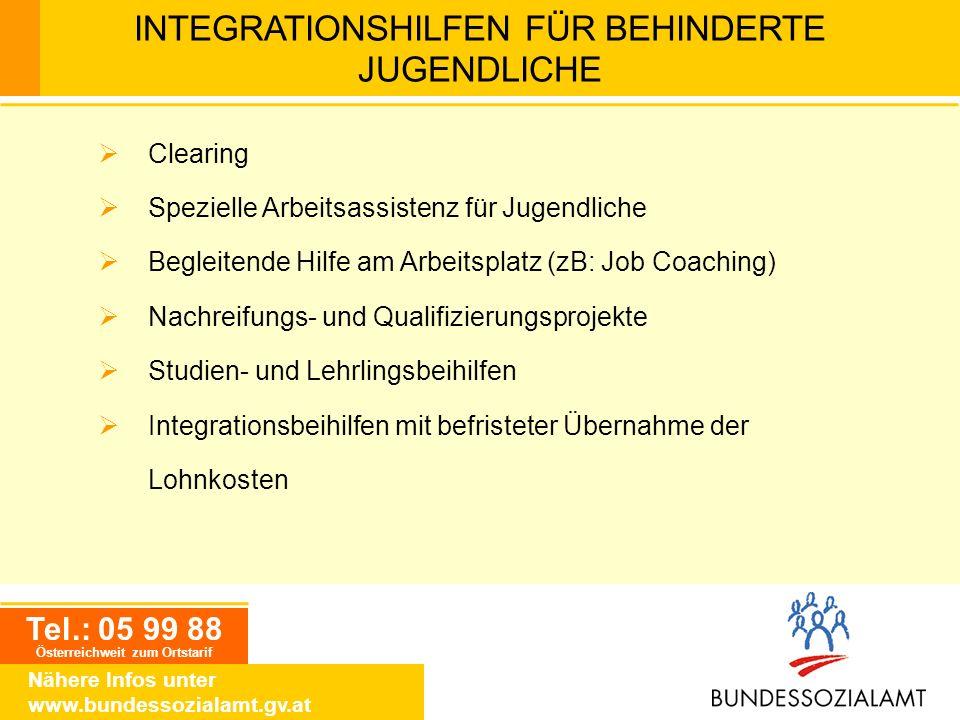 Tel.: 05 99 88 Österreichweit zum Ortstarif Nähere Infos unter www.bundessozialamt.gv.at Clearing Spezielle Arbeitsassistenz für Jugendliche Begleiten