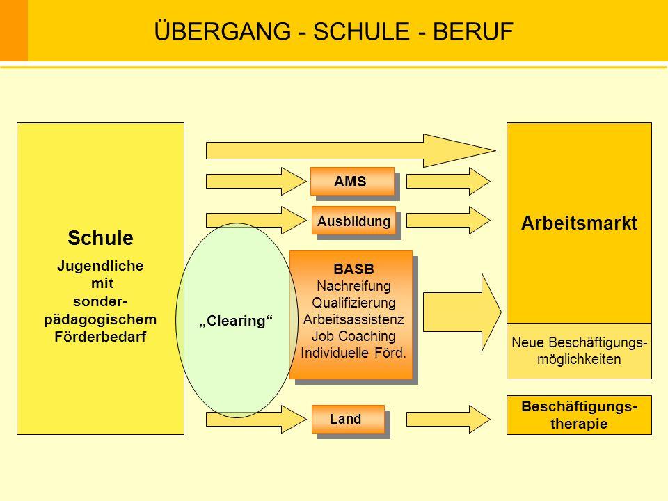 ÜBERGANG - SCHULE - BERUF Schule Jugendliche mit sonder- pädagogischem Förderbedarf Arbeitsmarkt AMS Ausbildung Beschäftigungs- therapie Land BASB Nac