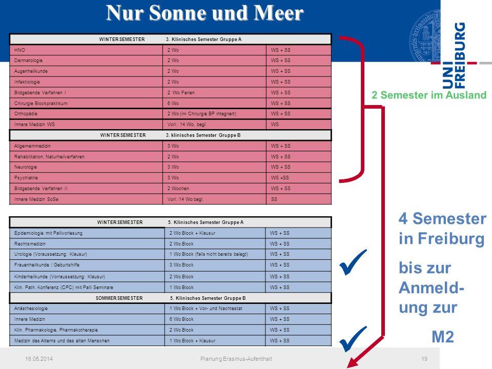 18.05.2014Planung Erasmus-Aufenthalt19 Nur Sonne und Meer WINTERSEMESTER 5. Klinisches Semester Gruppe A Epidemiologie mit Pallivorlesung2 Wo Block +