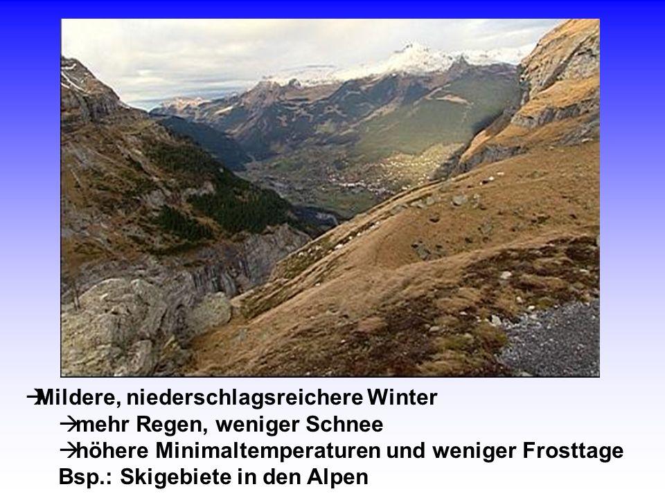 Mildere, niederschlagsreichere Winter mehr Regen, weniger Schnee höhere Minimaltemperaturen und weniger Frosttage Bsp.: Skigebiete in den Alpen