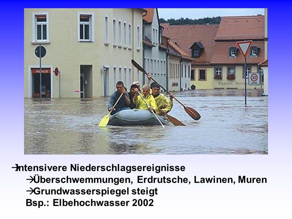 Intensivere Niederschlagsereignisse Überschwemmungen, Erdrutsche, Lawinen, Muren Grundwasserspiegel steigt Bsp.: Elbehochwasser 2002