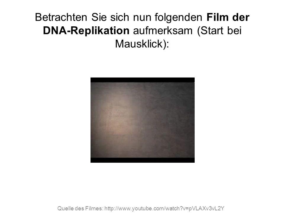 Quelle des Filmes: http://www.youtube.com/watch?v=pVLAXv3vL2Y Betrachten Sie sich nun folgenden Film der DNA-Replikation aufmerksam (Start bei Mauskli