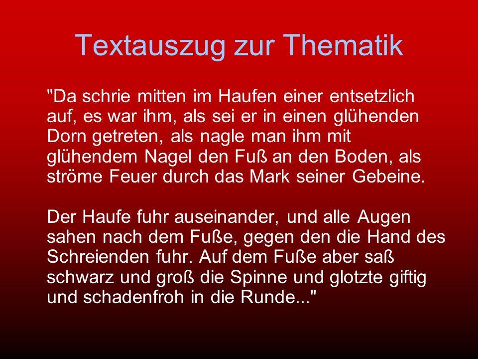 Textauszug zur Thematik