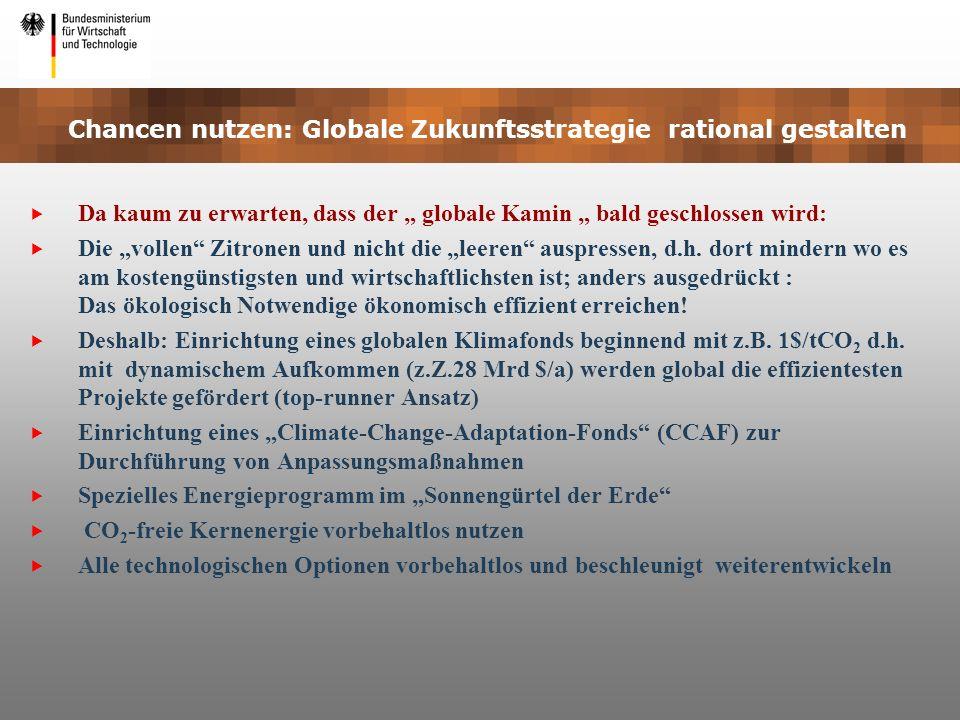 Chancen nutzen: Globale Zukunftsstrategie rational gestalten Da kaum zu erwarten, dass der globale Kamin bald geschlossen wird: Die vollen Zitronen un