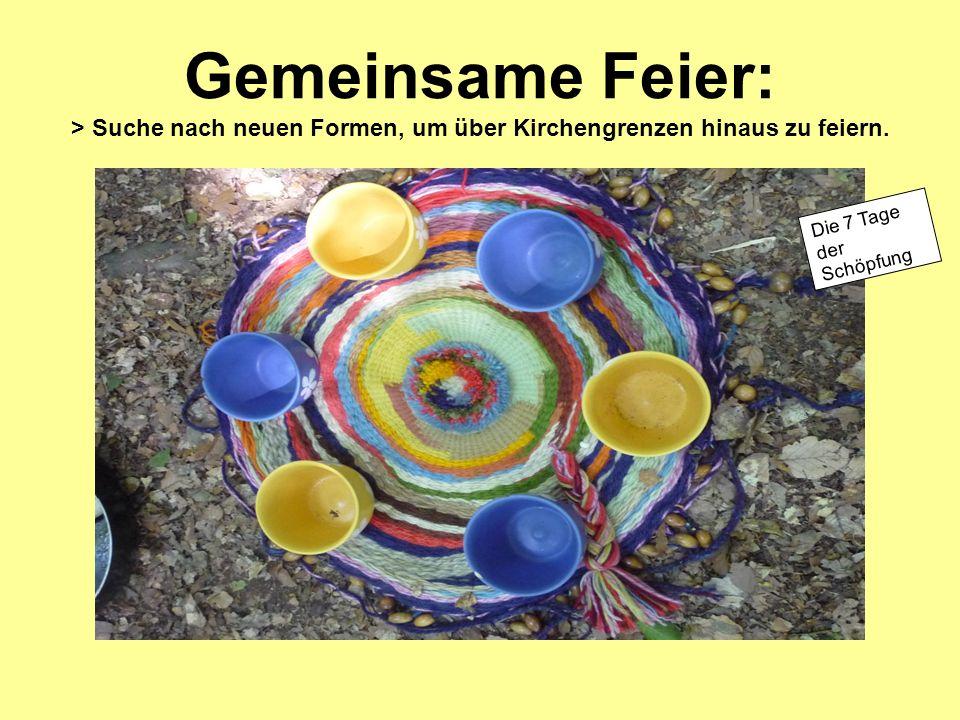 Gemeinsame Feier: > Suche nach neuen Formen, um über Kirchengrenzen hinaus zu feiern. Die 7 Tage der Schöpfung