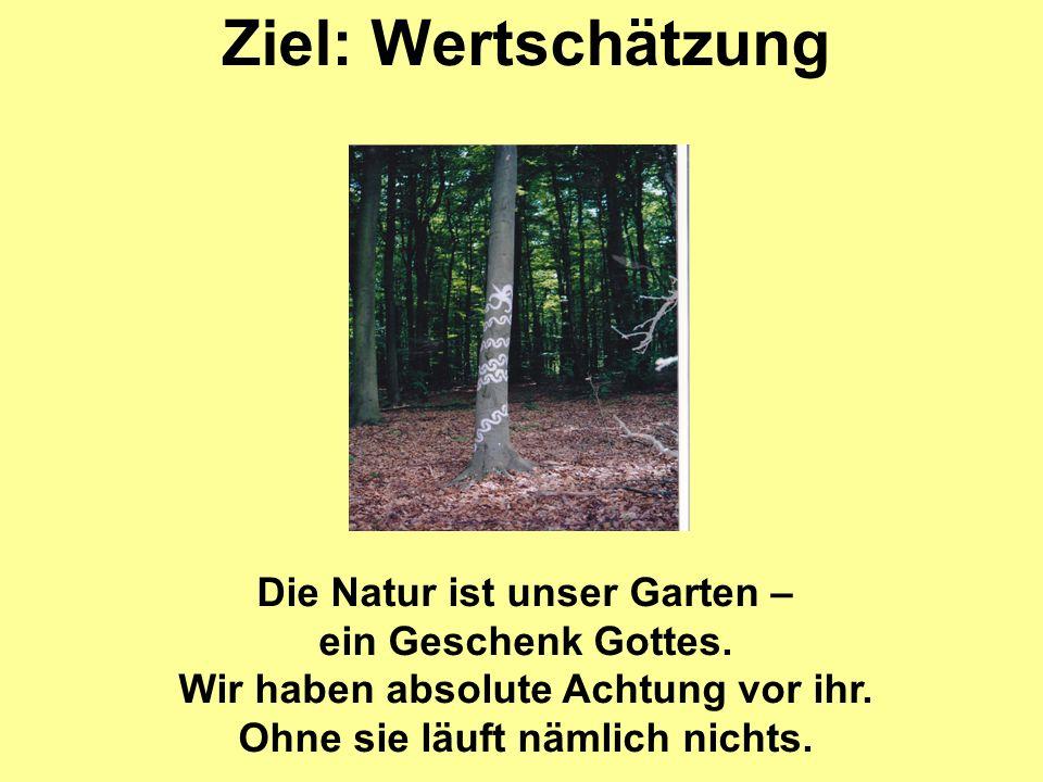 Ziel: Wertschätzung Die Natur ist unser Garten – ein Geschenk Gottes. Wir haben absolute Achtung vor ihr. Ohne sie läuft nämlich nichts.