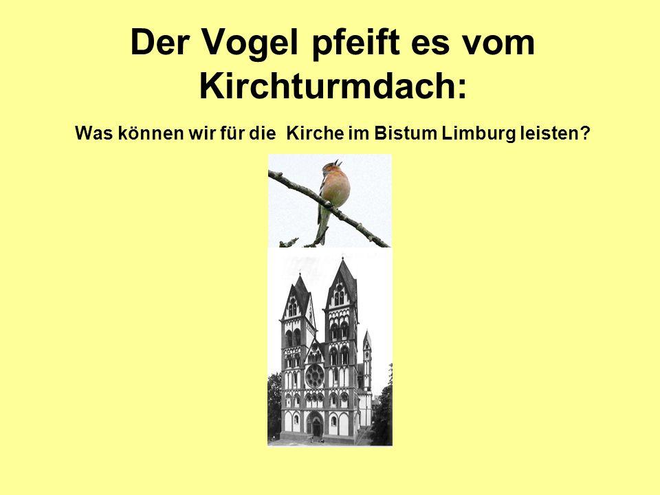 Der Vogel pfeift es vom Kirchturmdach: Was können wir für die Kirche im Bistum Limburg leisten?