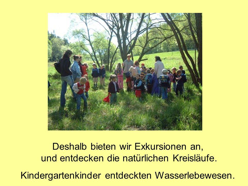 Deshalb bieten wir Exkursionen an, und entdecken die natürlichen Kreisläufe. Kindergartenkinder entdeckten Wasserlebewesen.