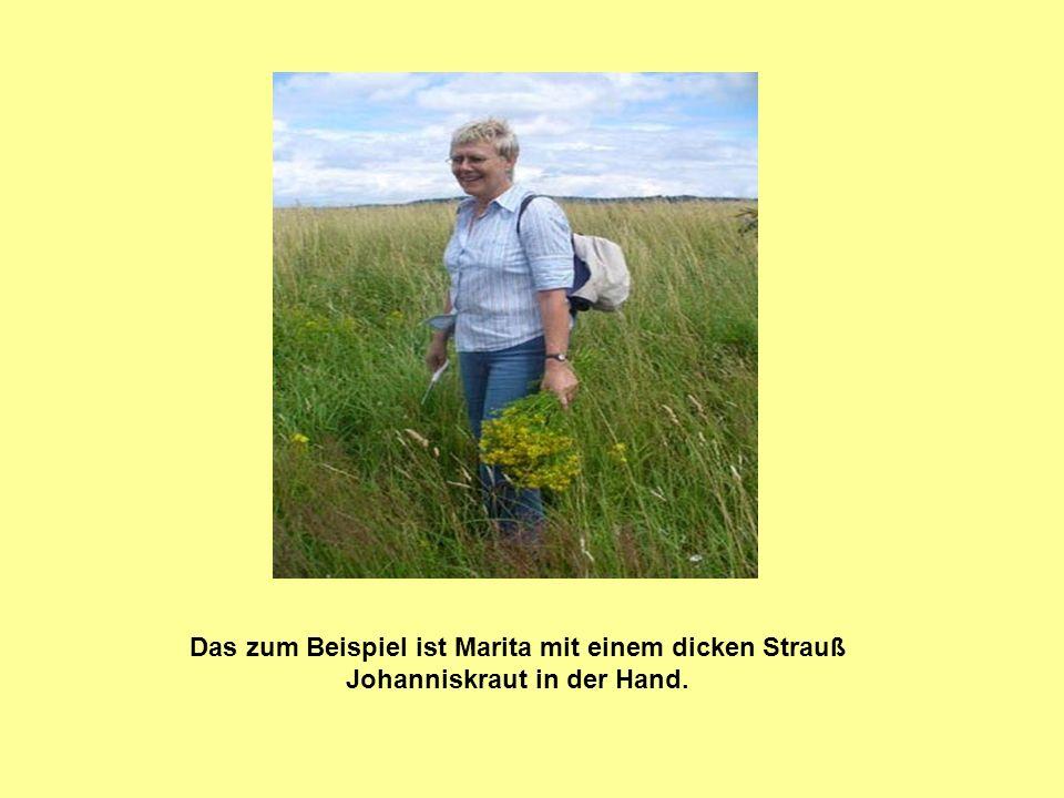 Das zum Beispiel ist Marita mit einem dicken Strauß Johanniskraut in der Hand.