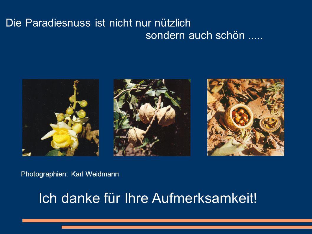 Die Paradiesnuss ist nicht nur nützlich sondern auch schön..... Photographien: Karl Weidmann Ich danke für Ihre Aufmerksamkeit!