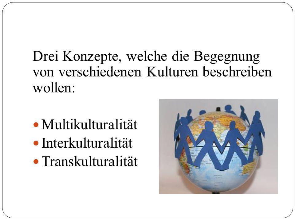 Drei Konzepte, welche die Begegnung von verschiedenen Kulturen beschreiben wollen: Multikulturalität Interkulturalität Transkulturalität