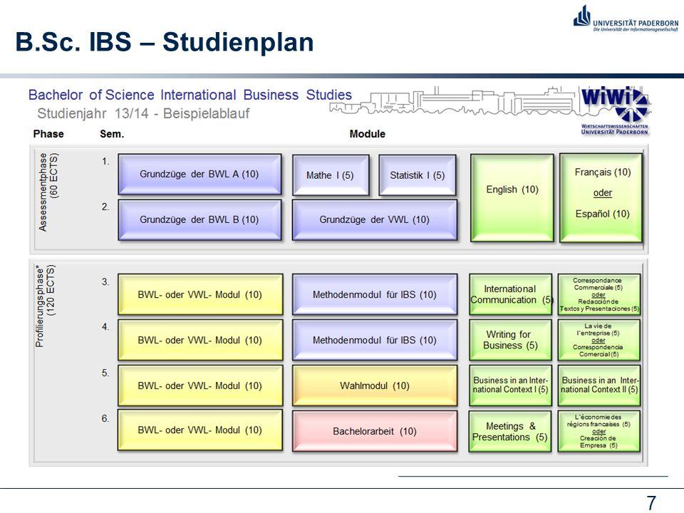 7 B.Sc. IBS – Studienplan