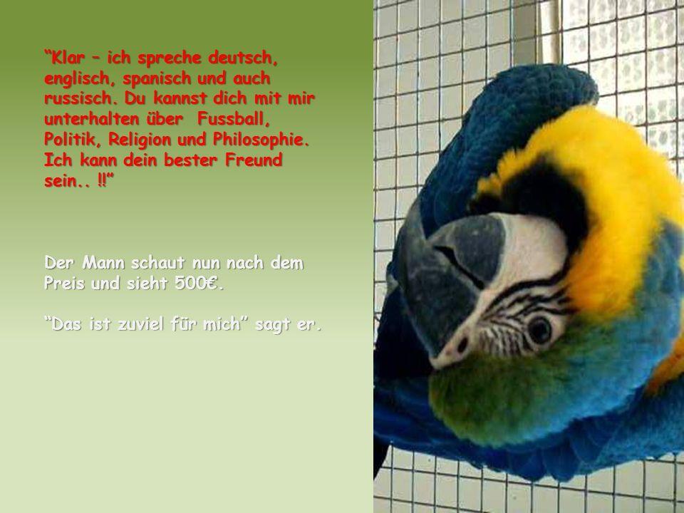 Psssst…hör mal-… niemand kauft einen Papagei ohne Beine… deshalb bin ich auch noch hier.