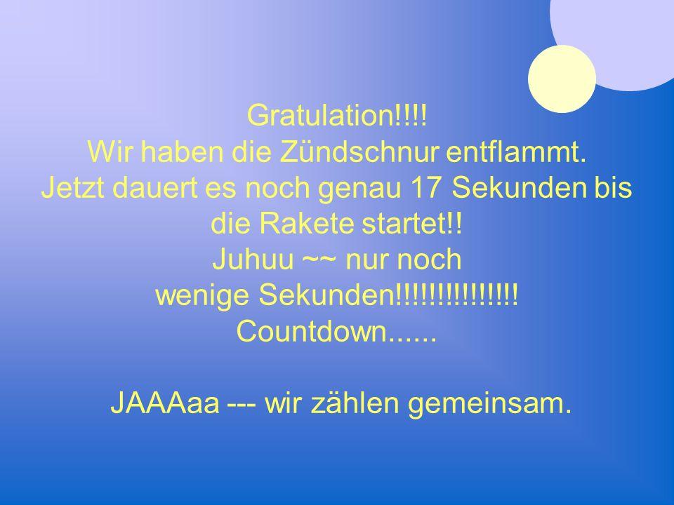 Gratulation!!!! Wir haben die Zündschnur entflammt. Jetzt dauert es noch genau 17 Sekunden bis die Rakete startet!! Juhuu ~~ nur noch wenige Sekunden!