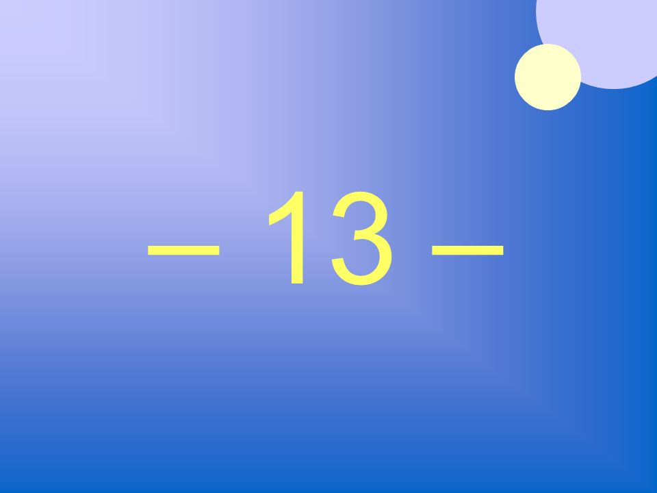 – 13 –