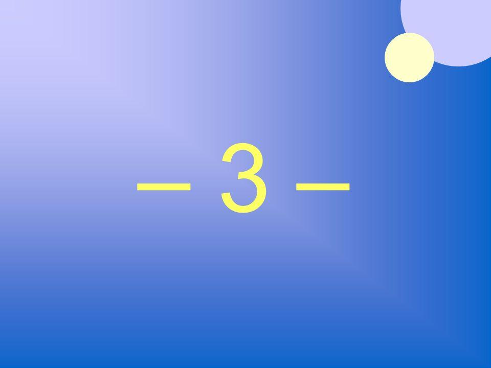 – 3 –