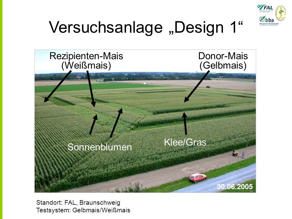 Versuchsanlage Design 1 30.06.2005 Donor-Mais (Gelbmais) Sonnenblumen Klee/Gras Rezipienten-Mais (Weißmais) Standort: FAL, Braunschweig Testsystem: Gelbmais/Weißmais