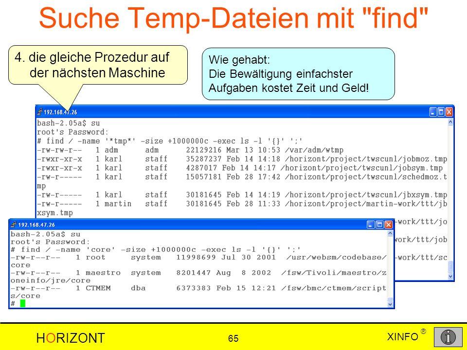XINFO HORIZONT 65 ® Suche Temp-Dateien mit