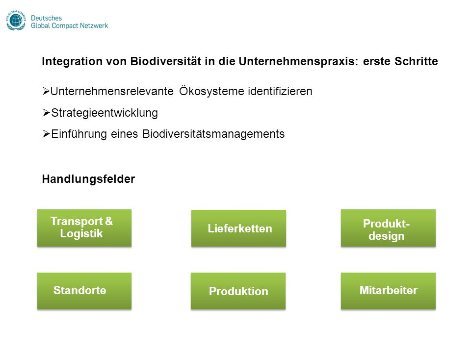 Unternehmensrelevante Ökosysteme identifizieren Strategieentwicklung Einführung eines Biodiversitätsmanagements Integration von Biodiversität in die U