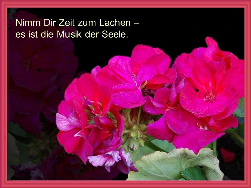 verteilt durch www.funmail2u.dewww.funmail2u.de Nimm Dir Zeit zum Lachen – es ist die Musik der Seele.