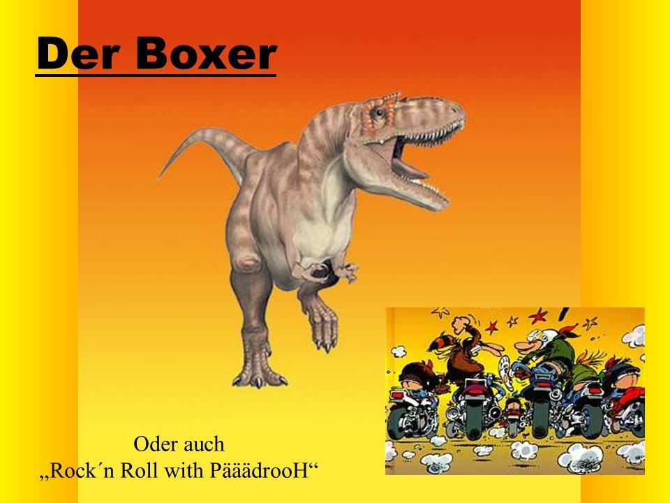Der Boxer Oder auch Rock´n Roll with PääädrooH