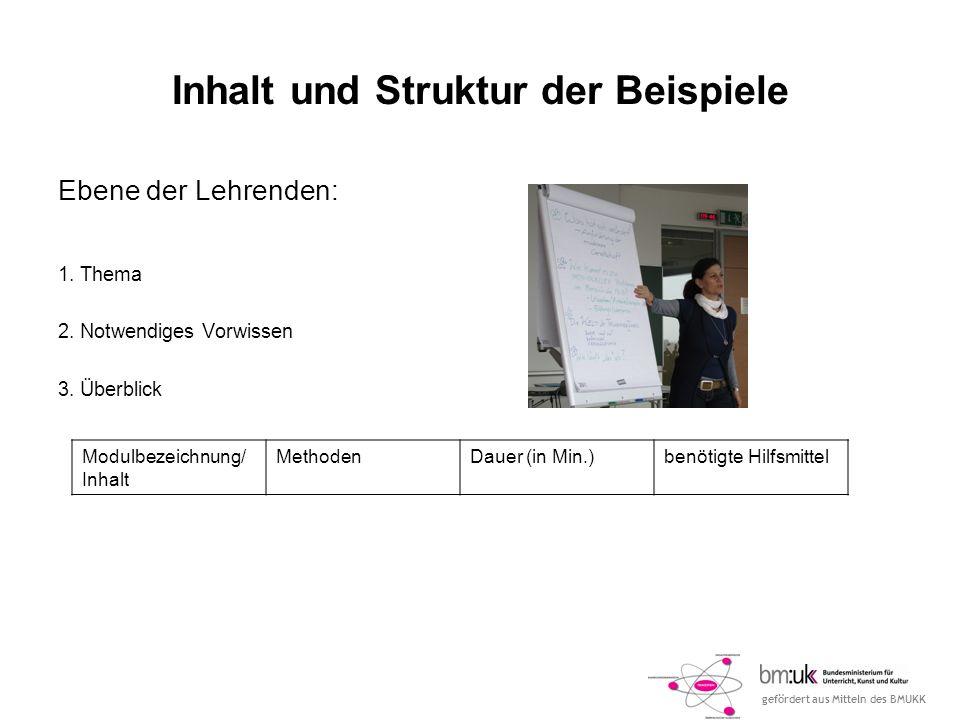 gefördert aus Mitteln des BMUKK Inhalt und Struktur der Beispiele Ebene der Lehrenden: 1.
