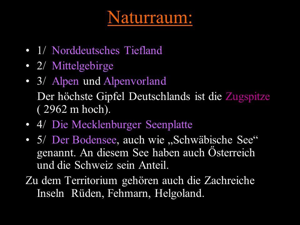 Naturraum: 1/ Norddeutsches Tiefland 2/ Mittelgebirge 3/ Alpen und Alpenvorland Der höchste Gipfel Deutschlands ist die Zugspitze ( 2962 m hoch).