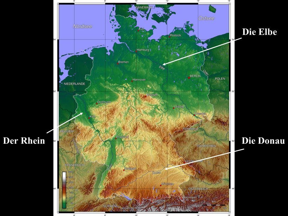 Die Elbe Der RheinDie Donau