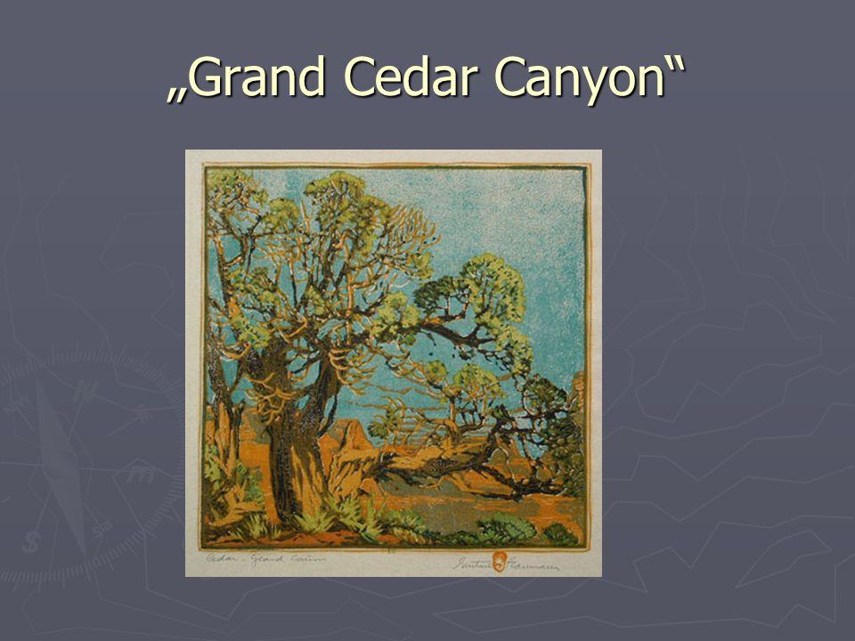 Grand Cedar Canyon