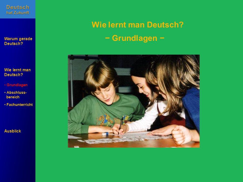 Wie lernt man Deutsch? Warum gerade Deutsch? Ausblick Grundlagen Abschluss- Abschluss- bereich Fachunterricht Fachunterricht Grundlagen Wie lernt man