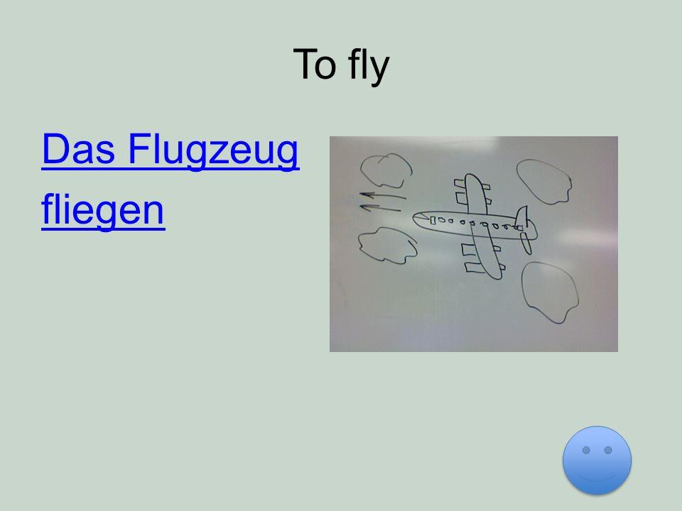 To fly Das Flugzeug fliegen