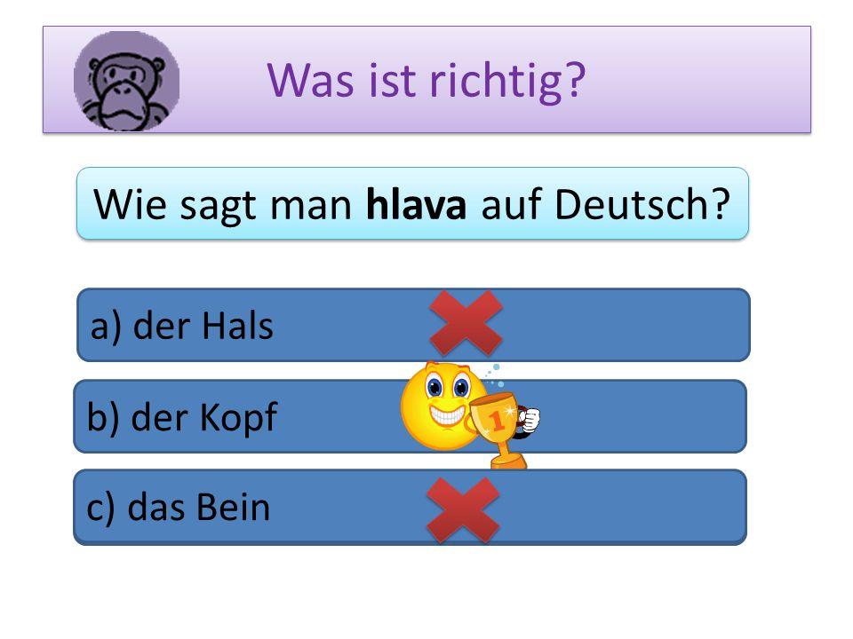 Was ist richtig? Wie sagt man hlava auf Deutsch? a) der Hals b) der Kopf c) das Bein