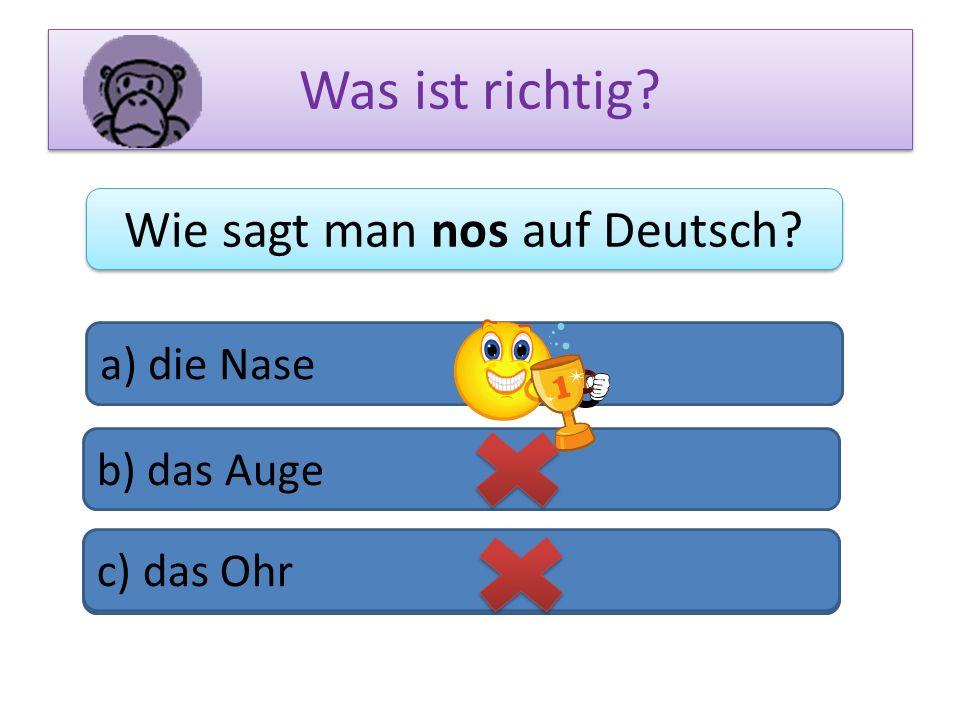 Was ist richtig? Wie sagt man nos auf Deutsch? a) die Nase b) das Auge c) das Bein c) das Ohr