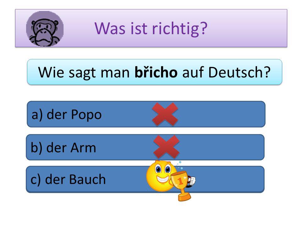 Was ist richtig? Wie sagt man břicho auf Deutsch? a) der Popo b) der Arm c) das Bein c) der Bauch