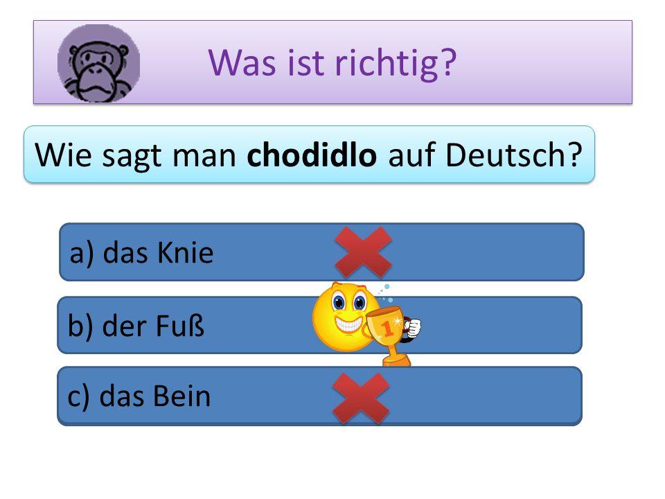 Was ist richtig? Wie sagt man chodidlo auf Deutsch? a) das Knie b) der Fuß c) das Bein