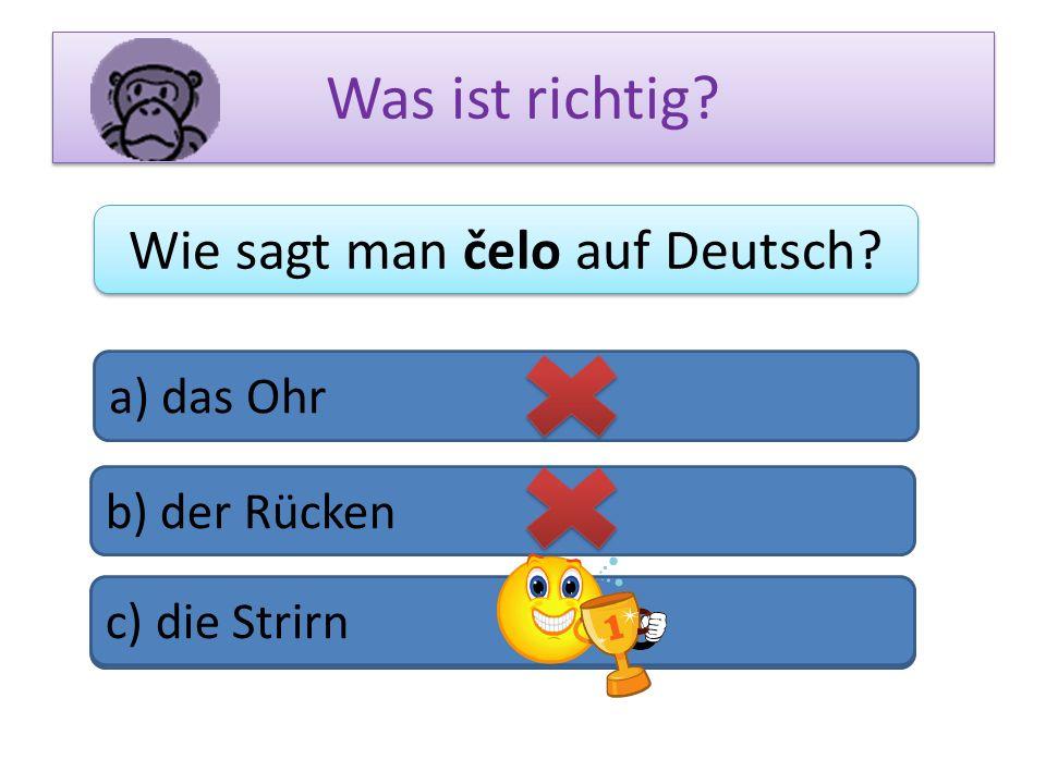 Was ist richtig? Wie sagt man čelo auf Deutsch? a) das Ohr b) der Rücken c) das Bein c) die Strirn
