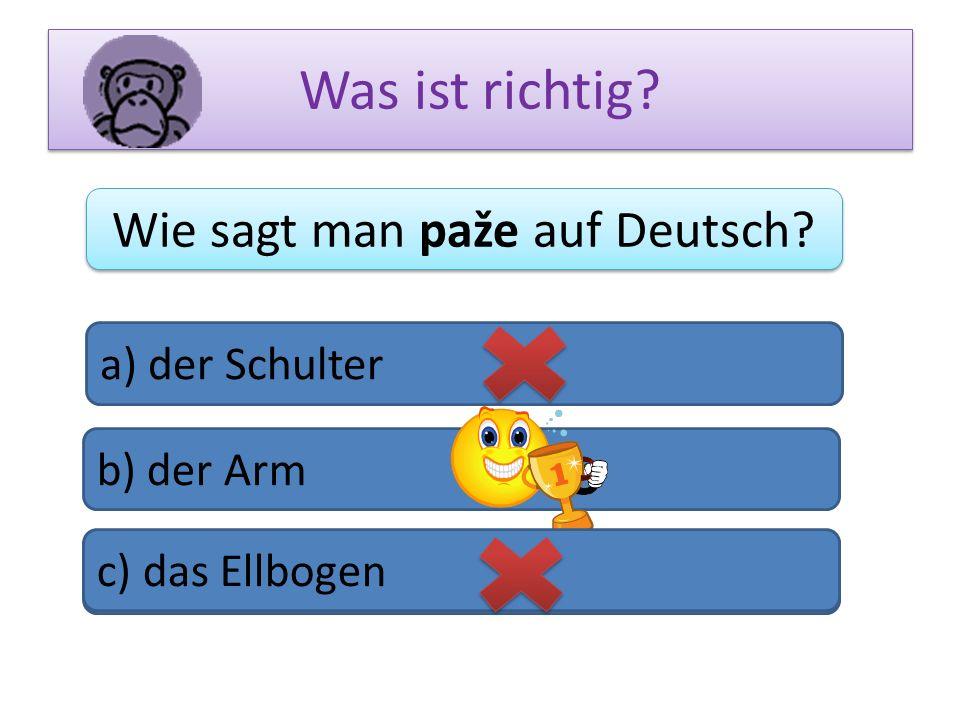 Was ist richtig? Wie sagt man paže auf Deutsch? a) der Schulter b) der Arm c) das Bein c) das Ellbogen
