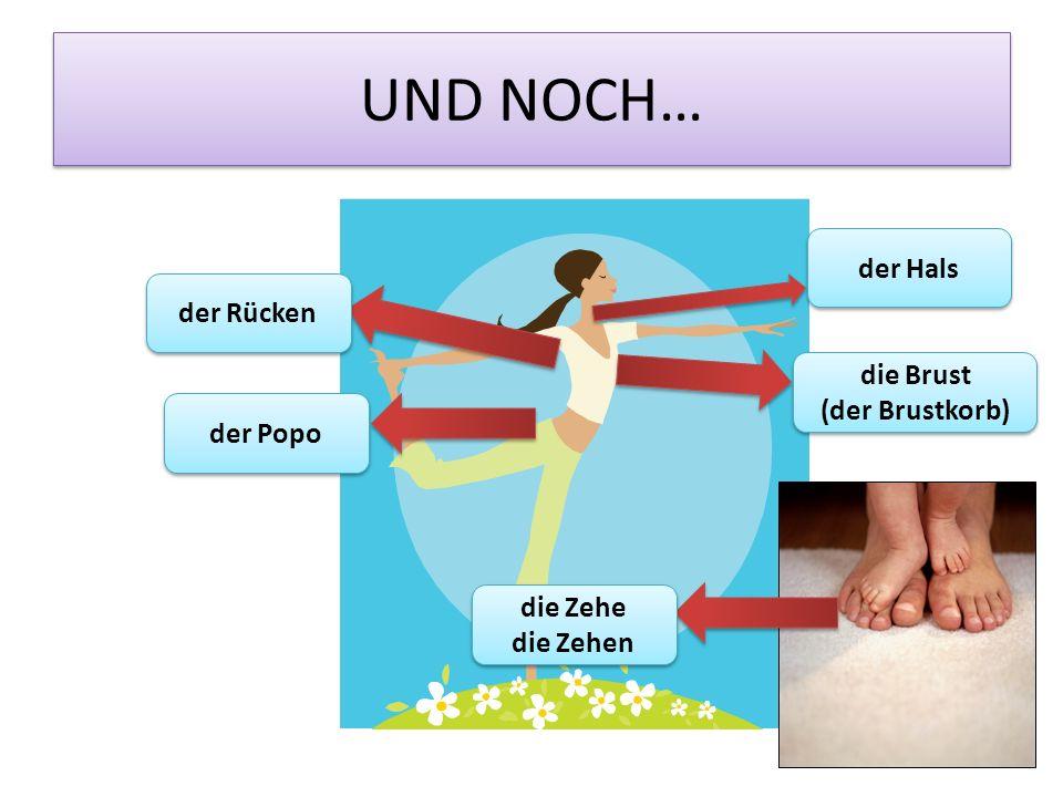 UND NOCH… der Rücken die Brust (der Brustkorb) die Brust (der Brustkorb) der Hals der Popo die Zehe die Zehen die Zehe die Zehen