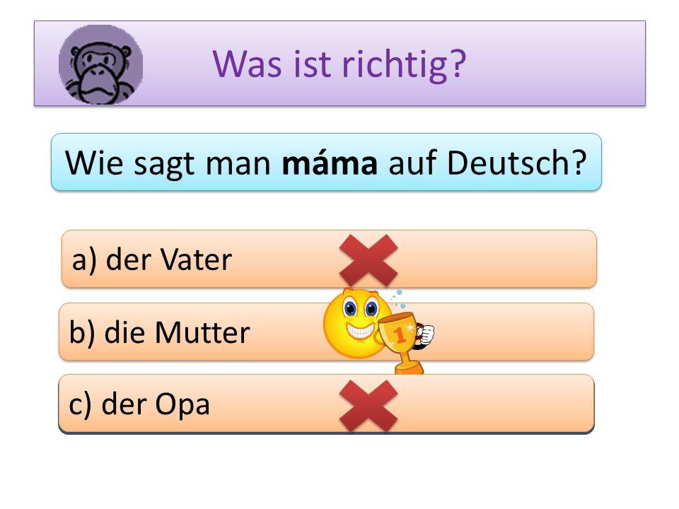 Was ist richtig? Wie sagt man máma auf Deutsch? a) der Vater b) die Mutter c) das Bein c) der Opa
