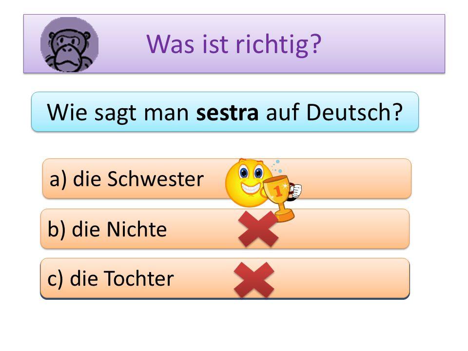 Was ist richtig? Wie sagt man sestra auf Deutsch? a) die Schwester b) die Nichte c) das Bein c) die Tochter