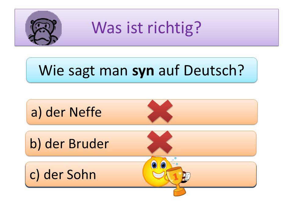 Was ist richtig? Wie sagt man syn auf Deutsch? a) der Neffe b) der Bruder c) das Bein c) der Sohn