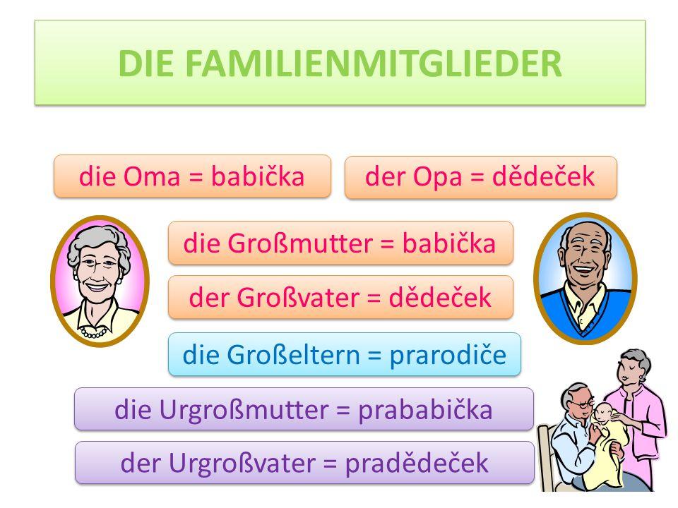 DIE FAMILIENMITGLIEDER der Onkel = strýc die Tante = teta das Kind = dítě