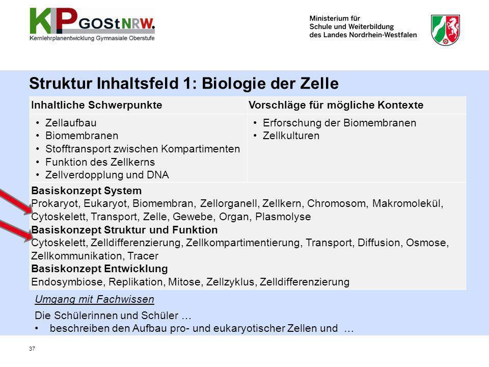 Struktur Inhaltsfeld 1: Biologie der Zelle Inhaltliche SchwerpunkteVorschläge für mögliche Kontexte Zellaufbau Biomembranen Stofftransport zwischen Ko